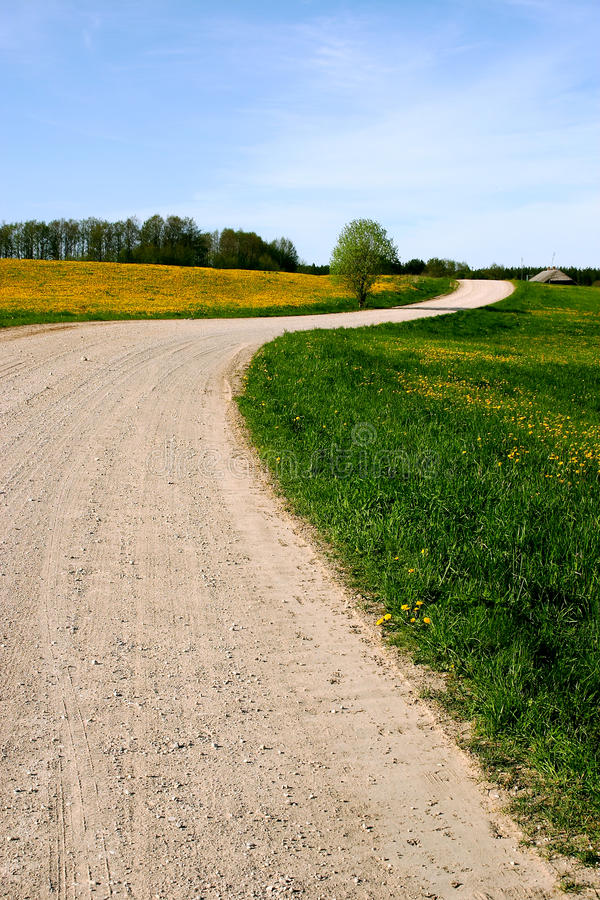 Download Country Road 1 stock photo. Image of rural, green, lane - 13172780