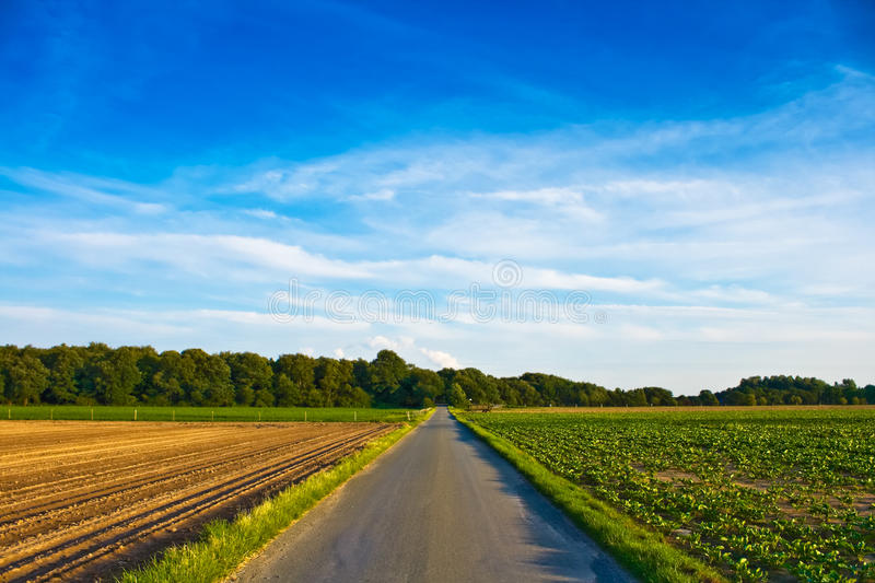 Download Country Road stock photo. Image of environment, environmental - 12405120