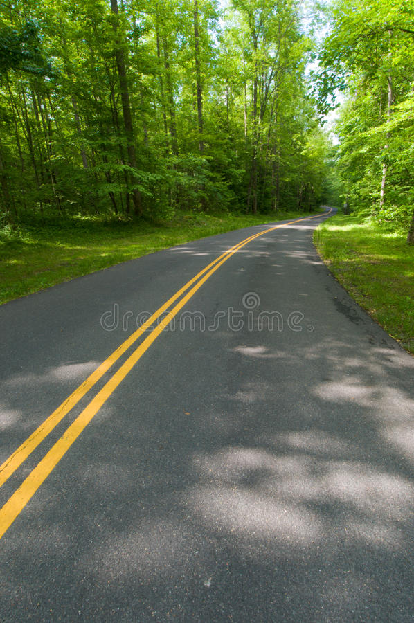 Download Country Road stock photo. Image of green, background - 14836354