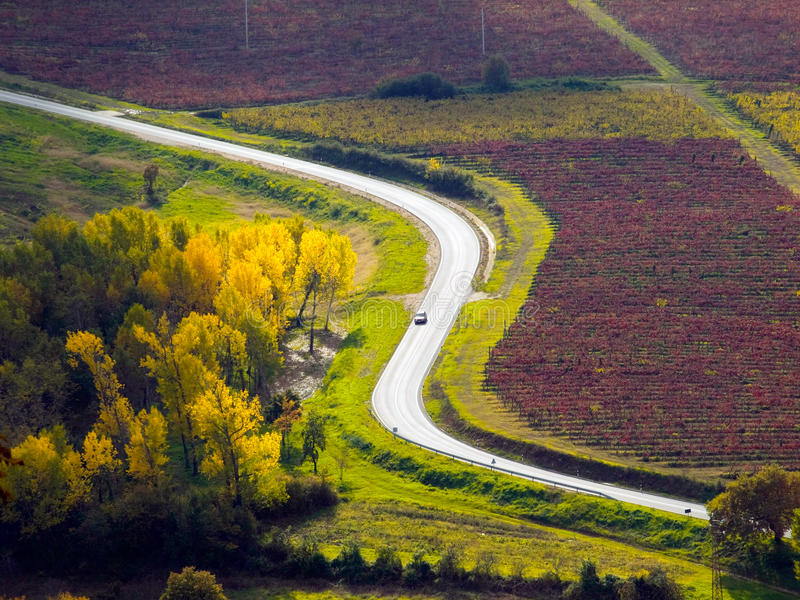 Country road. Through vineyards and fields bathed in fall colors somewhere in Istria, Croatia stock images
