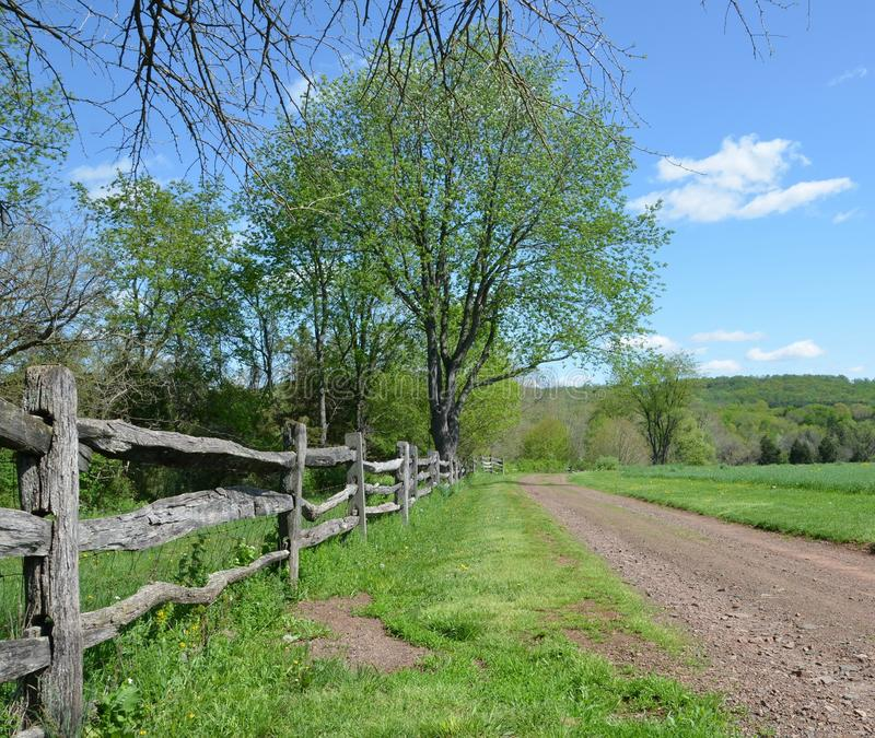 Country road. With fence and trees stock images
