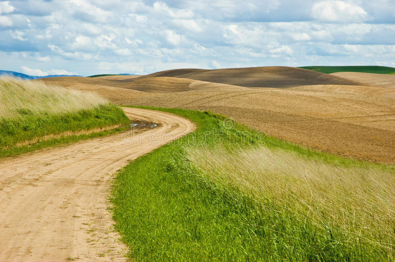 Download Country road stock photo. Image of pasture, summer, dirt - 19745118