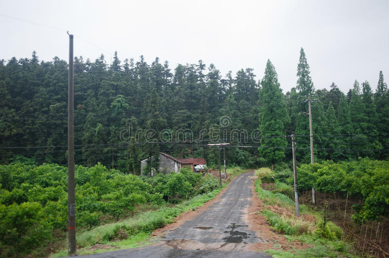 Download Country road stock image. Image of post, road, poor, fresh - 19900335
