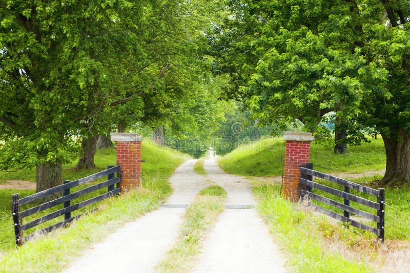 Download Country Road stock image. Image of perspective, trees - 20996899