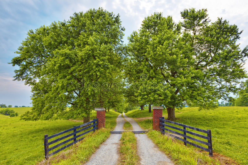 Download Country Road stock photo. Image of posts, fields, fence - 21102628