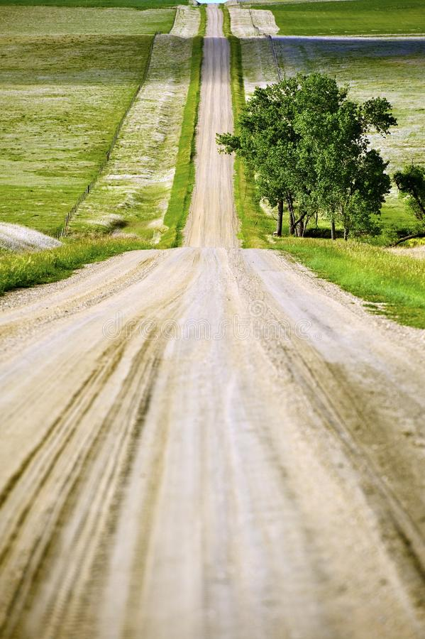 Download Country Road stock photo. Image of kadoka, horizon, agriculture - 25162740