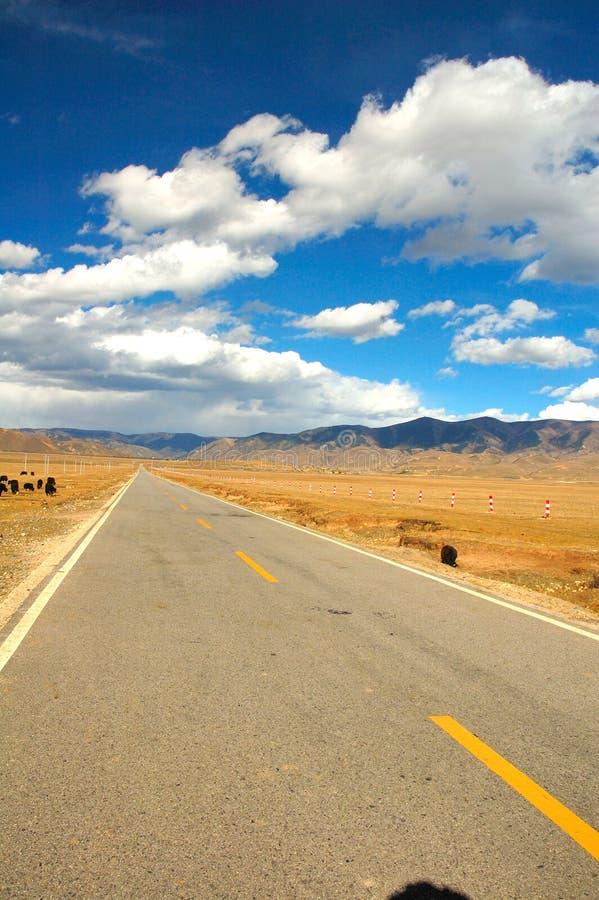 country road στοκ φωτογραφίες