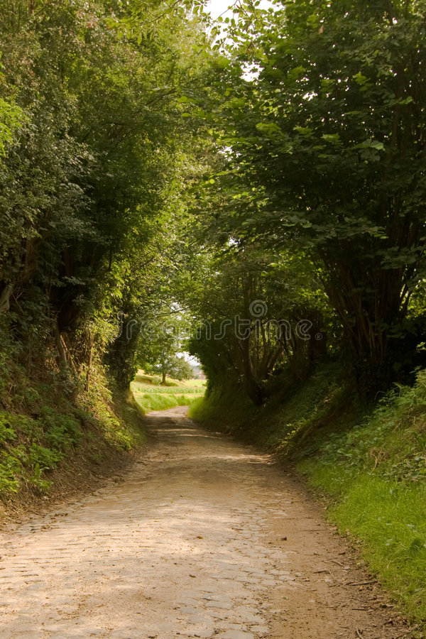 Country road. Typical country road in Flemish-Brabant near Leuven, Belgium stock image