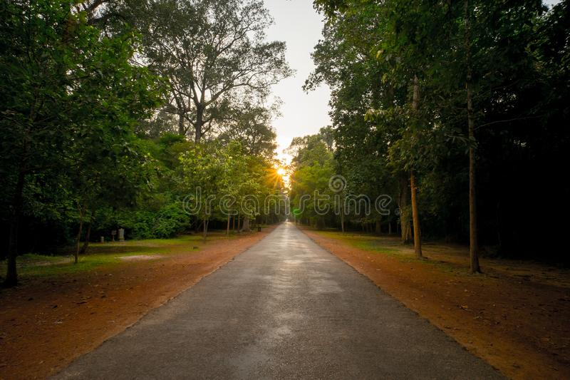 Country road around angkor wat temple area with sun star in the background. Auiet, quiet, empty, nopeople stock image