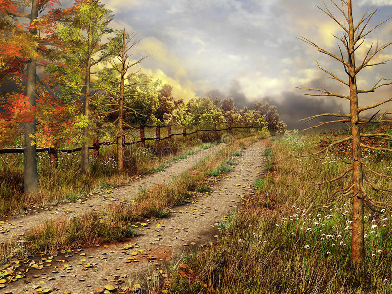 Country road in autumnal forest vector illustration