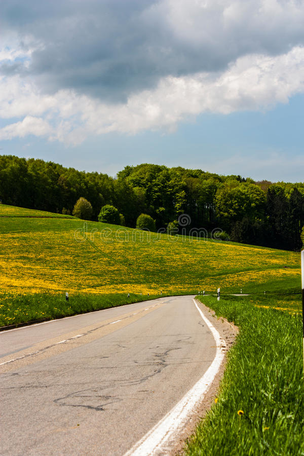 Download Country Road stock photo. Image of highway, blooming - 30937238