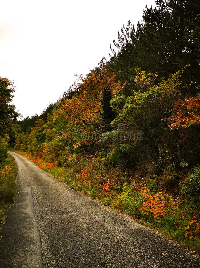 Country road on a fall day. Sdr_vivi stock images