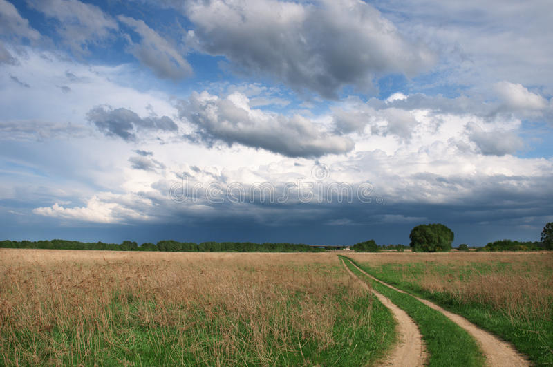 Download Country road in the field stock image. Image of landscape - 14234649