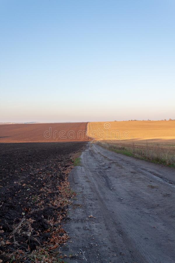 Country road in the field royalty free stock photo
