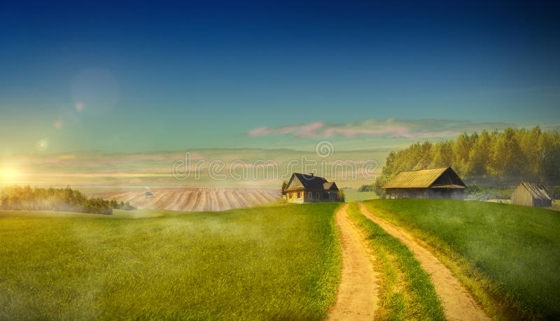 Country road in the field leading to the farm holdings royalty free stock photo