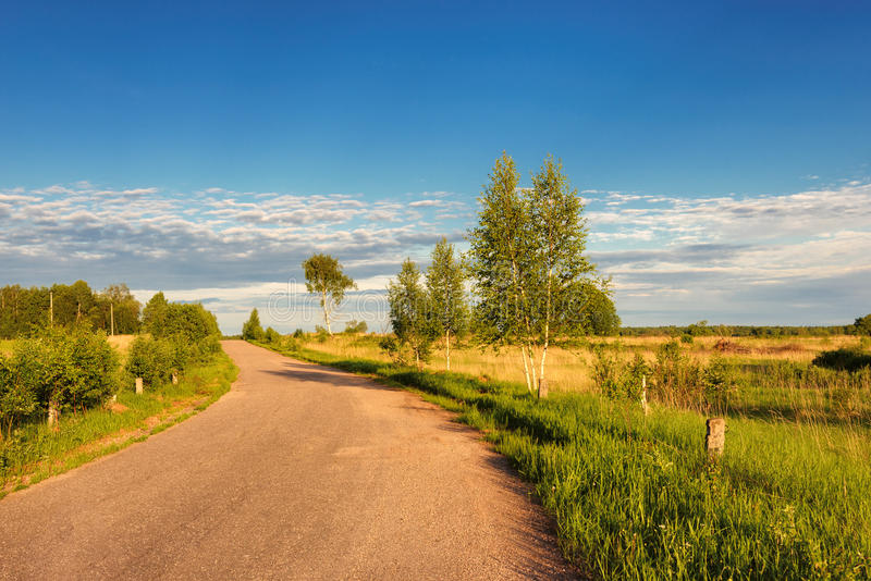 Country road through the fields royalty free stock image