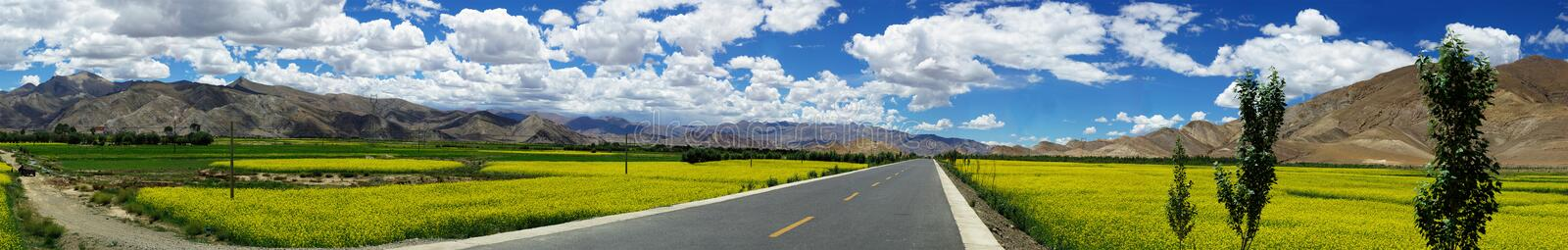 Country road with flowers,mountain and trees royalty free stock images
