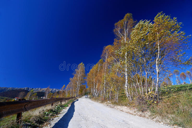 Download Country Road Landscape In Autumn Stock Image - Image: 16713003