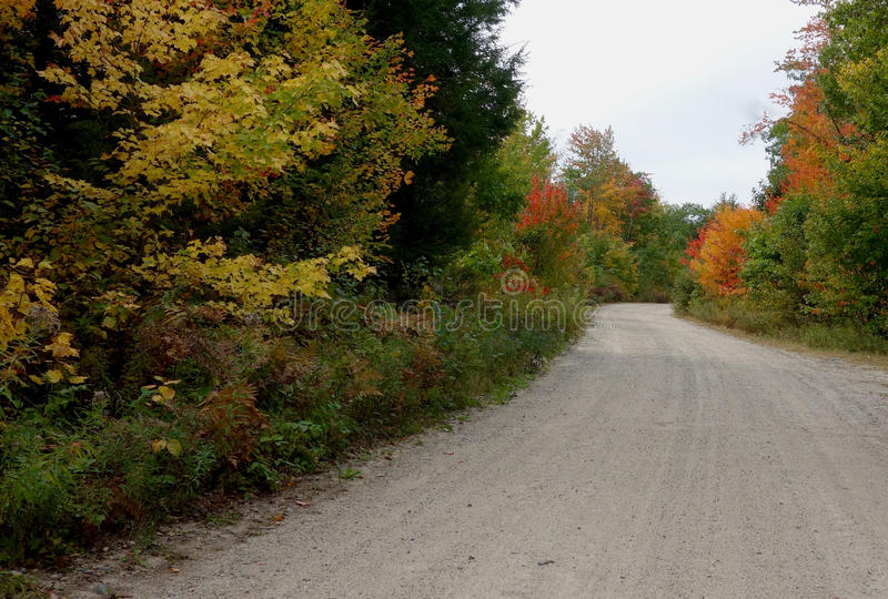 Country road in Maine with thick autumn foilage. Unpaved curving country road in Maine in October 2015 with thick foilage turning red and yellow stock photos