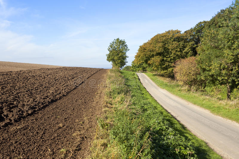 Country road beside a plowed field. A newly plowed field beside a small tarmac road and woodlands under a blue sky in the yorkshire wolds stock photography
