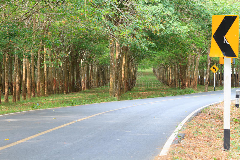Country road with rubber trees and traffic signs. Country road with rubber trees tunnel on the road with traffic signs stock images