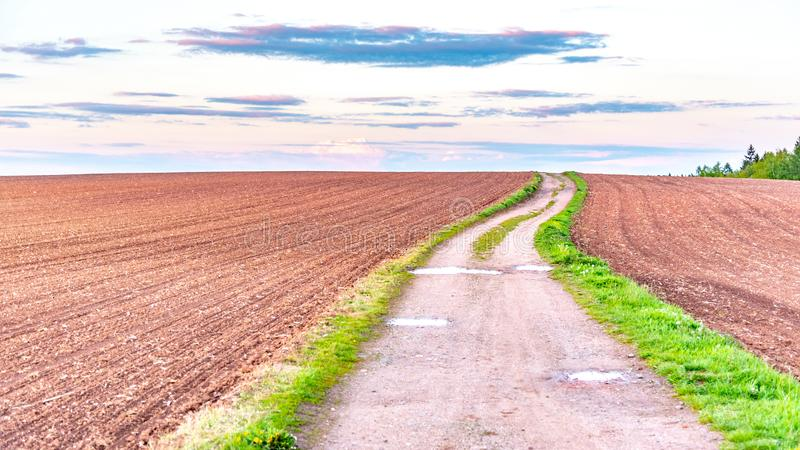 Country road in rural agricultural landscape. Red soil fields around Nova Paka, Czech Republic.  royalty free stock photos