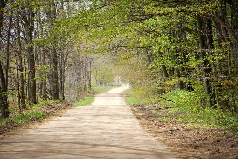 Country Road in Springtime stock photos