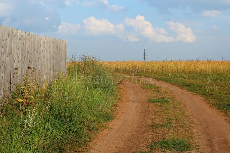 Country road. Summer landscape. royalty free stock photo
