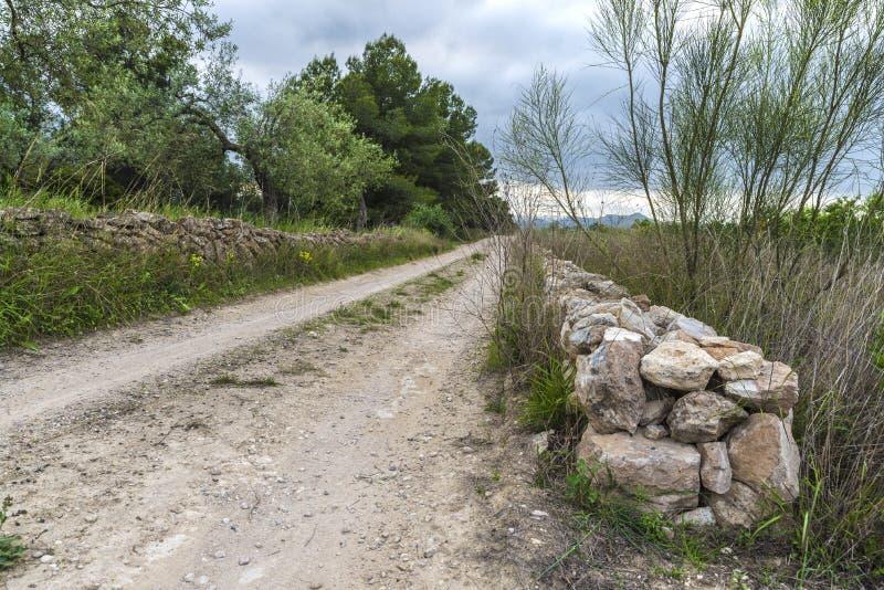 Country road. In Tarragona, Catalonia, Spain stock images