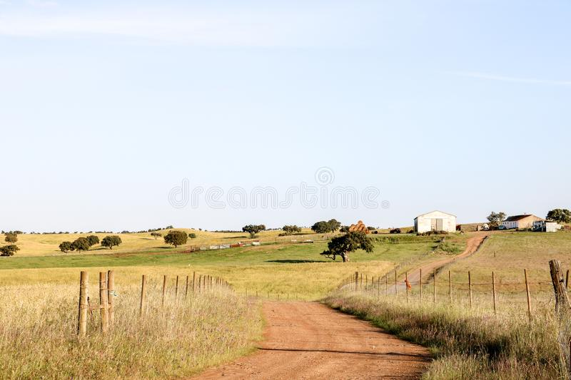Country road to a large farm royalty free stock image