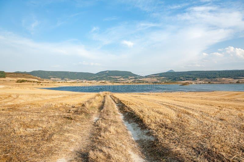 Country road towards the lake in Navarra, Spain stock photos