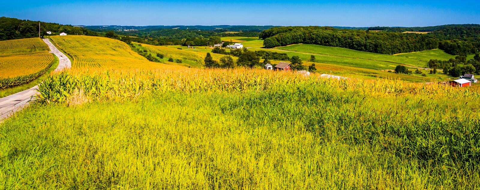 Country road and view of farm fields and rolling hills in York C stock photography