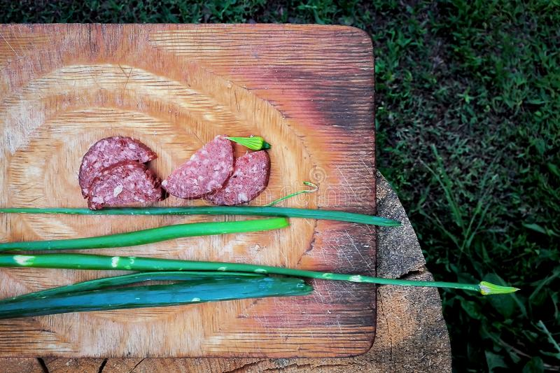 Country Summer Garden Outdoor Snacks: Sliced Salami Sausage And Green Onions On A Rusty Cutting Board Placed On The Wooden Log royalty free stock images