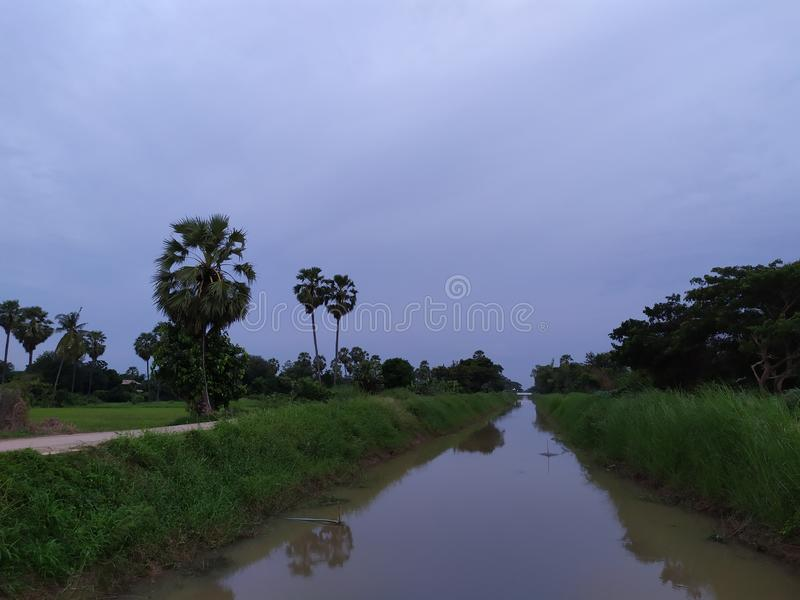 Country road thailand tree beatifull rice mountian green field lake stock images