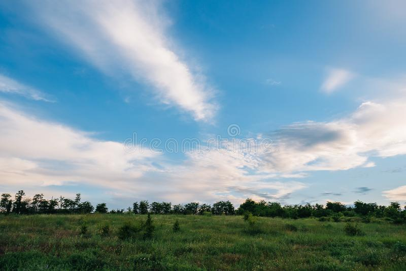 Country view with grass, trees and clouds at evening stock image