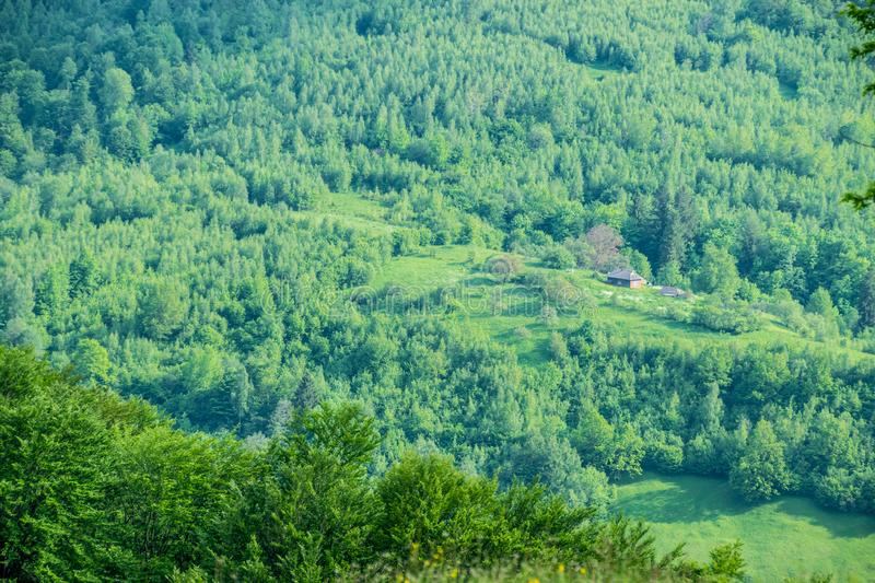 Country yard in the forest. Top down view from the hill of Carpathian Mounrains in Ukraine. Green forests and fields in spring stock image
