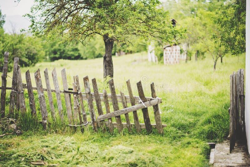 Country yard with trees,. Country yard with trees and open porch stock photos