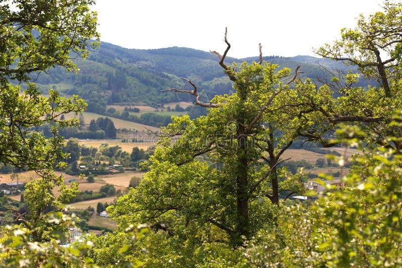 Countryscape hesse Tyskland arkivbilder