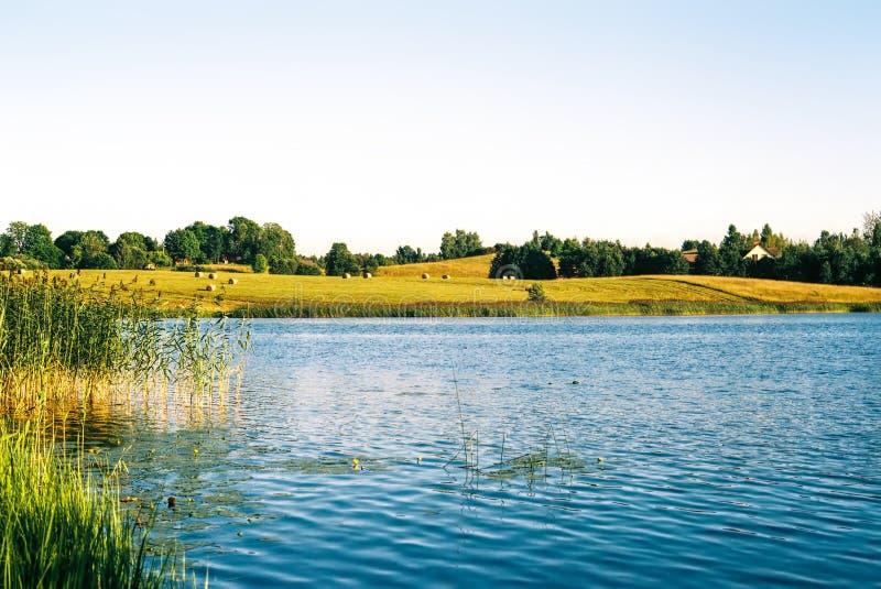 Countryside湖在夏天 免版税图库摄影