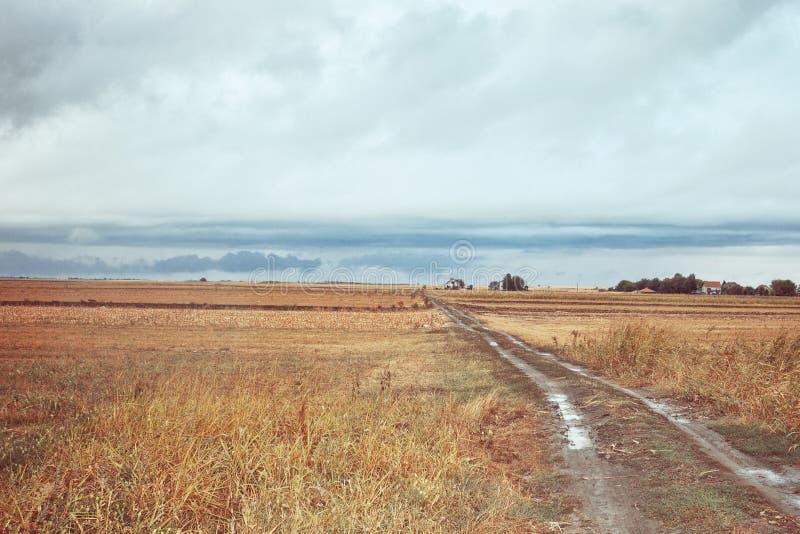 Countryside at autmn