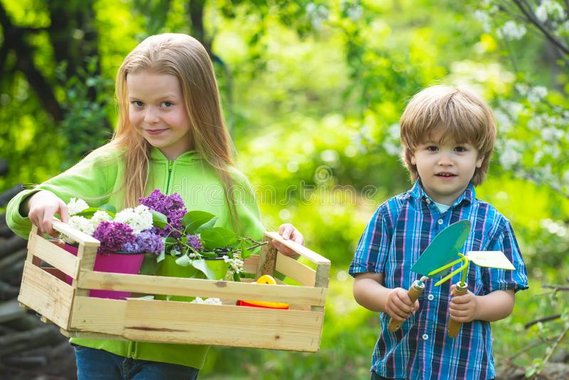 Countryside children. Cute boy and girl work in garden. Eco garden workers. Happy kids work. Mommy little helpers royalty free stock image
