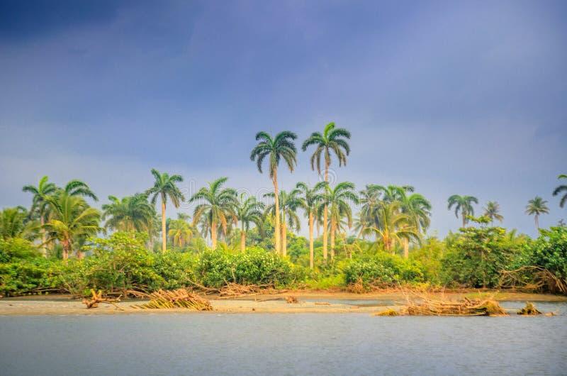 Countryside, Cuban nature royalty free stock photos