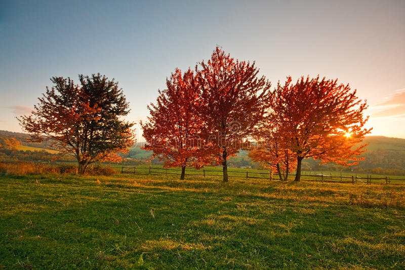 Countryside in Czech Republic. royalty free stock image