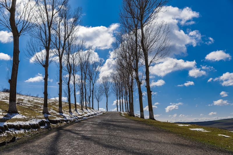 Countryside empty Forgotten Road spring time royalty free stock image