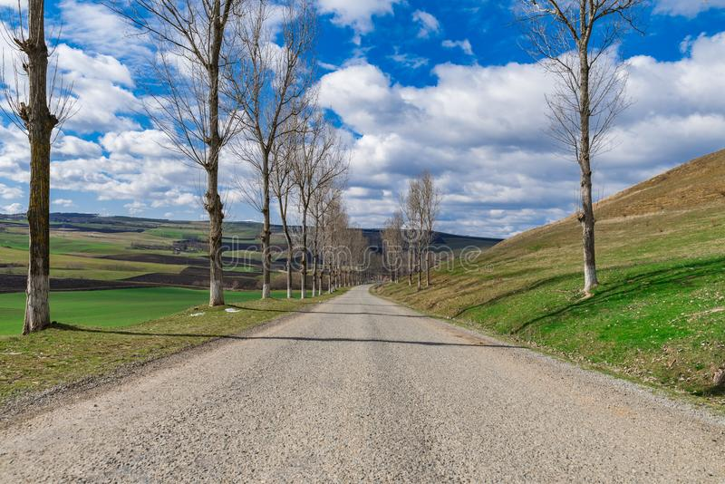 Countryside empty Forgotten Road spring time royalty free stock photos