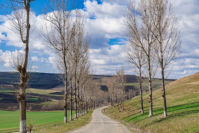 Countryside empty Forgotten Road spring time stock image