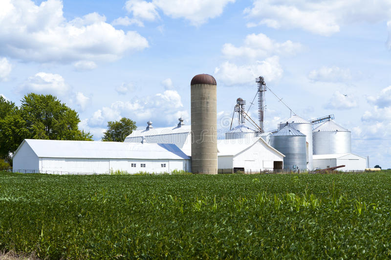 Download Countryside Farm stock photo. Image of industry, cattle - 26613812