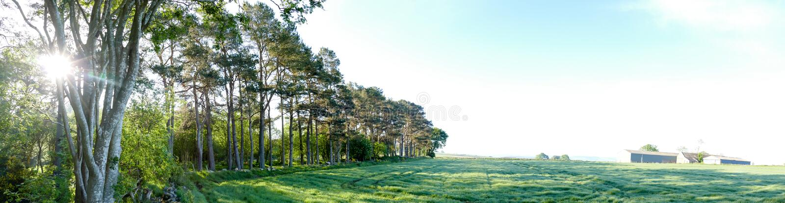 Countryside Farm next to forest Panorama royalty free stock image