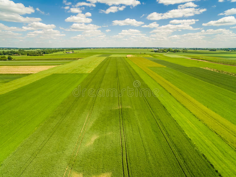 Countryside and field seen from the bird`s eye view. Crop fields stretching to the horizon. stock photography