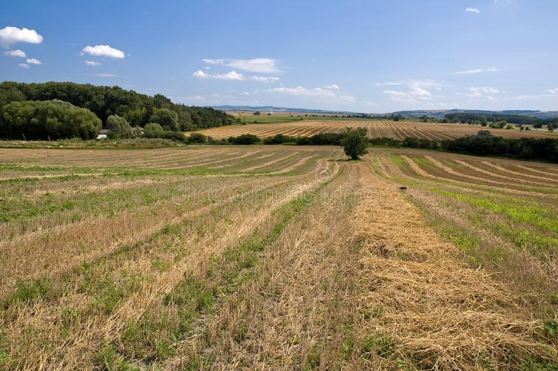 Download Countryside Fields Landscape Stock Photo - Image: 10487566